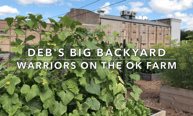 Deb's Big Back Yard Features the OK Farm in Urban Gardening Spotlight Video!