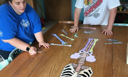 Make no bones about it…the Life Shop learns about the skeletal system!
