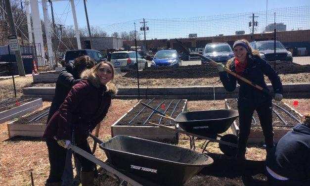 Thanks to the Saturday Farm Volunteers!