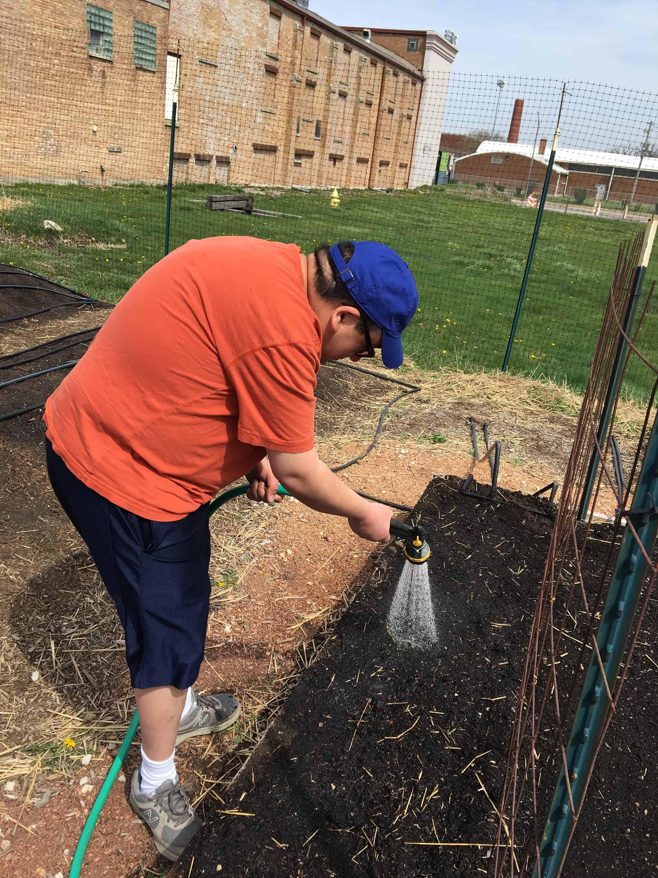 David watering his seeds